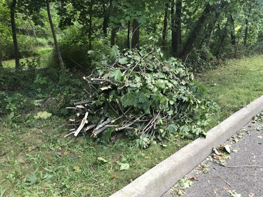Destructive+storm+leaves+neighborhoods+powerless%2C+waiting+on+Con+Edison+to+fix