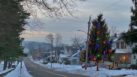 Hudson Avenue Tree Brightens Winter Nights