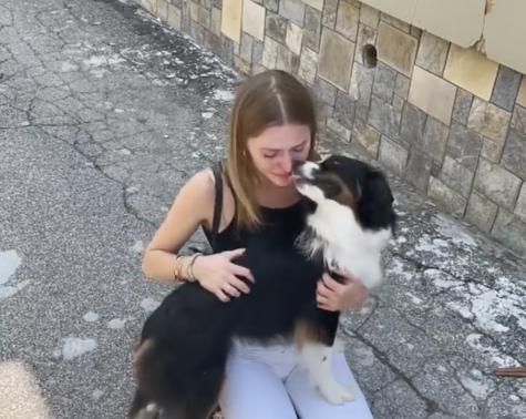 Peekskill Couple Rescues Celebrity Dog